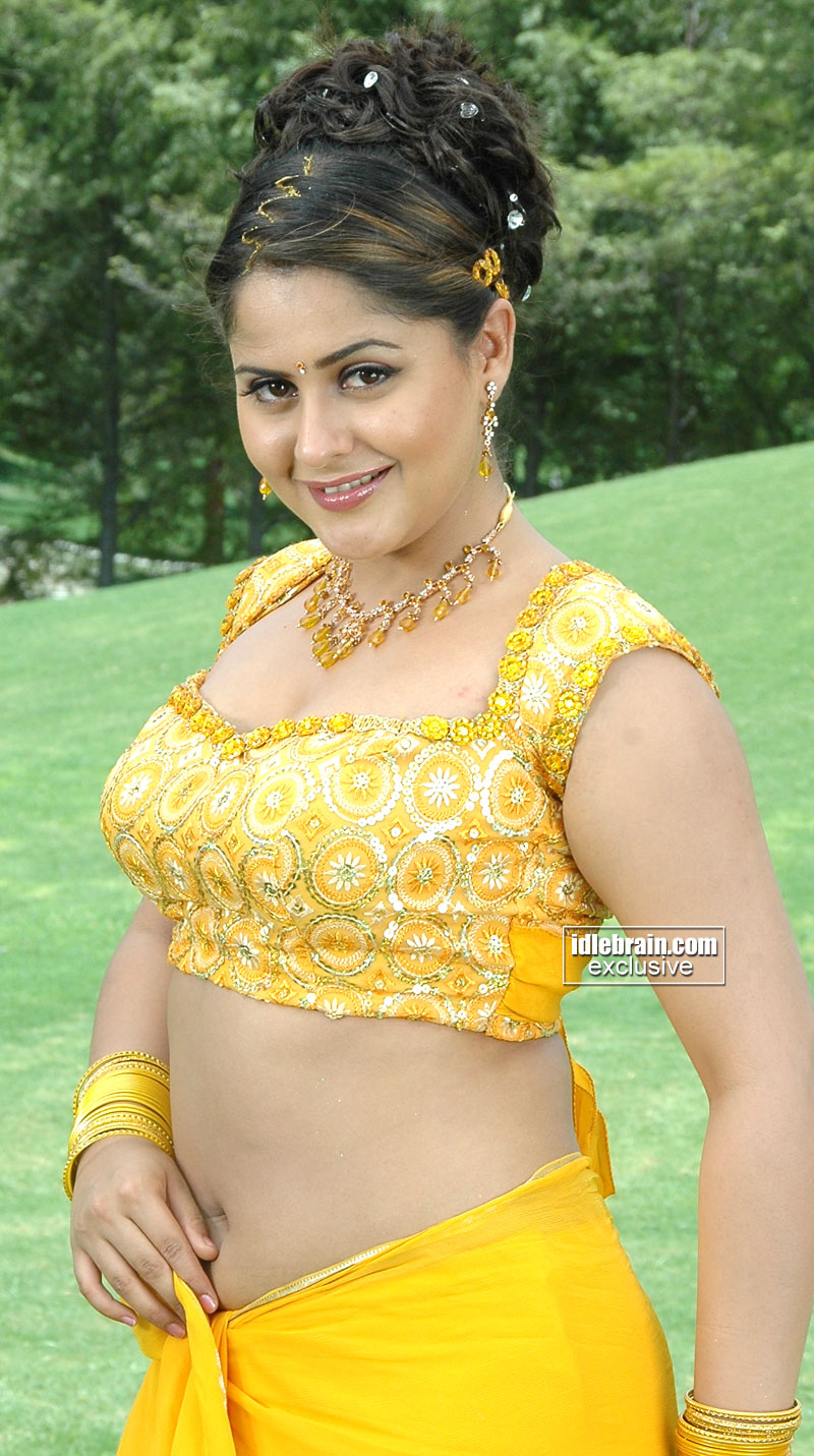 Telugu Spice Actres Farzana Hot Show Off In Saree -2924