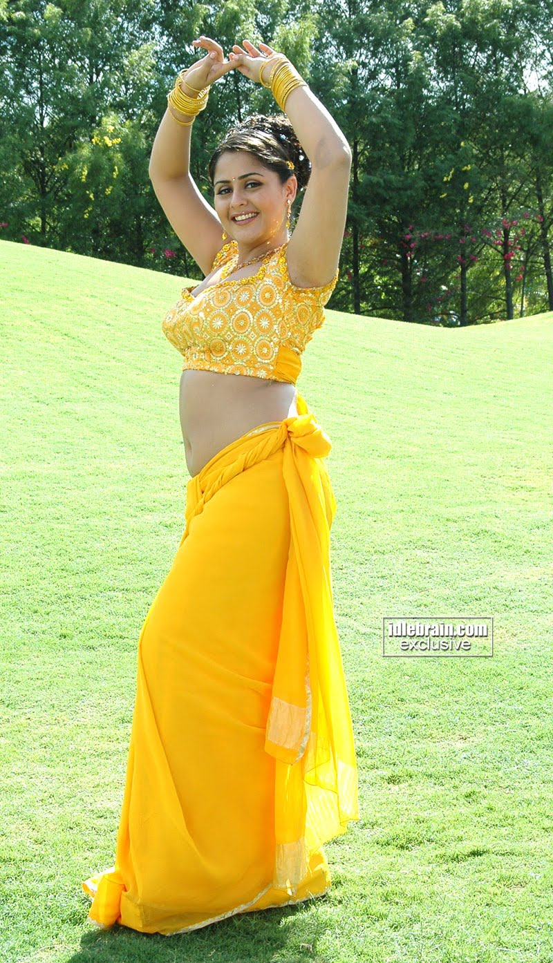 Telugu Spice Actres Farzana Hot Show Off In Saree -8893